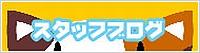 子猫カフェ☆スタッフブログ